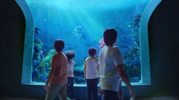 Capri Sun Roarin' Waters TV Spot, 'Aquarium'