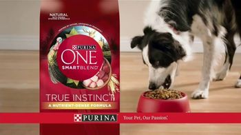Purina ONE SmartBlend True Instinct TV Spot, 'La evolución' [Spanish] - Thumbnail 9