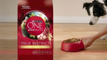 Purina ONE SmartBlend True Instinct TV Spot, 'La evolución' [Spanish] - Thumbnail 8