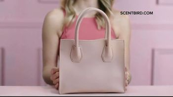 Scentbird TV Spot, 'Finding the One' - Thumbnail 6