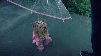 Scrubbing Bubbles Bubbly Bleach Gel TV Spot, 'Pasear a Cupcake no es como dar un paseo por el parque' [Spanish]
