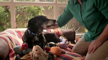 Blue Buffalo Foundation TV Spot, 'Pet Cancer Awareness' - Thumbnail 5
