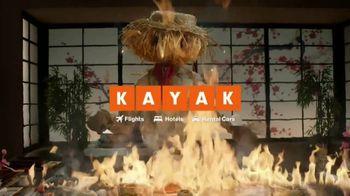 Kayak TV Spot, 'Scarecrow' - Thumbnail 8
