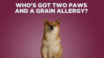Petcurean TV Spot, 'Grain Allergies' - Thumbnail 2