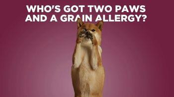 Petcurean TV Spot, 'Grain Allergies'