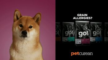 Petcurean TV Spot, 'Grain Allergies' - Thumbnail 5