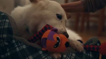 Walmart TV Spot, 'Unwanted Dog Toy' Song by The Human League - Thumbnail 10