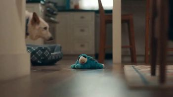 Walmart TV Spot, 'Unwanted Dog Toy' Song by The Human League - Thumbnail 3