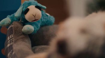 Walmart TV Spot, 'Unwanted Dog Toy' Song by The Human League - Thumbnail 4