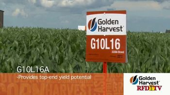 Golden Harvest G10L16A TV Spot, 'Mitigate Loss' - Thumbnail 2