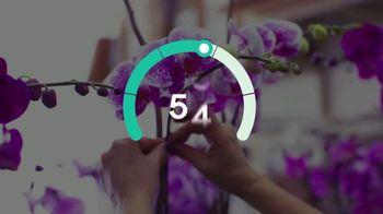 GoDaddy InSight TV Spot, 'Success GPS' Song by Transporter - Thumbnail 7