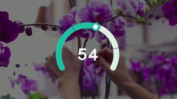 GoDaddy InSight TV Spot, 'GPS del éxito' canción de Transporter [Spanish] - Thumbnail 6