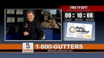 Beldon LeafGuard TV Spot, 'Eliminate Health Hazards' - Thumbnail 4