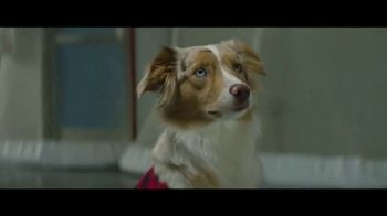 Nulo TV Spot, 'Travis and Niylah Know Better' Featuring Travis Dermott - 1 commercial airings