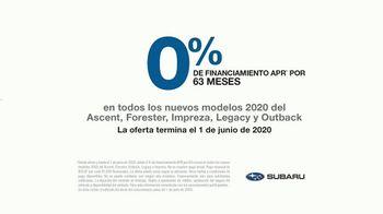 Subaru TV Spot, 'Clasificación' [Spanish] [T2] - Thumbnail 9