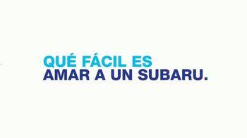 Subaru TV Spot, 'Clasificación' [Spanish] [T2] - Thumbnail 8