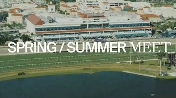 Gulfstream Park & Casino TV Spot, 'Spring and Summer Racing' - Thumbnail 1
