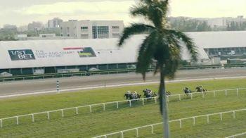 Gulfstream Park & Casino TV Spot, 'Spring and Summer Racing' - Thumbnail 4