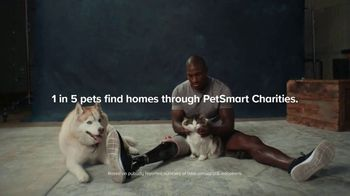 PetSmart Charities TV Spot, 'National Adoption Days: They Just Love' - Thumbnail 9