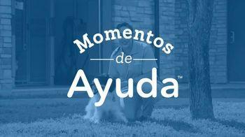 Honda TV Spot, 'Ayuda para cachorritos' [Spanish] [T2] - Thumbnail 2
