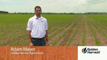 Golden Harvest G03R40 TV Spot, 'Agronomy Spotlight: Broadly Adapted' - Thumbnail 1
