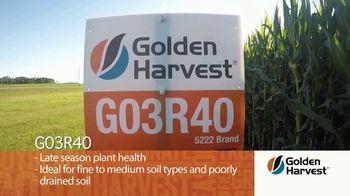 Golden Harvest G03R40 TV Spot, 'Agronomy Spotlight: Broadly Adapted' - Thumbnail 2