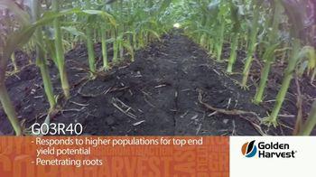 Golden Harvest G03R40 TV Spot, 'Agronomy Spotlight: Broadly Adapted' - Thumbnail 3