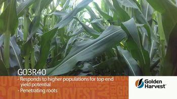 Golden Harvest G03R40 TV Spot, 'Agronomy Spotlight: Broadly Adapted' - Thumbnail 4