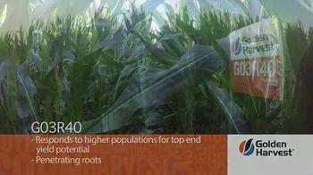 Golden Harvest G03R40 TV Spot, 'Agronomy Spotlight: Broadly Adapted' - Thumbnail 5