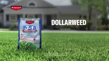 BioAdvanced 3-in-1 Weed & Feed TV Spot, 'Fall' - Thumbnail 5