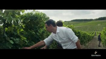 Rémy Martin TV Spot, 'Baptiste Loiseau' [Spanish]
