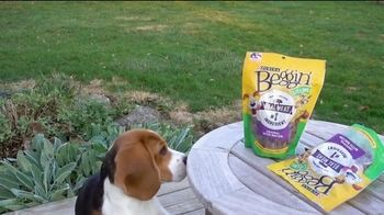 Purina Beggin' TV Spot, 'Bonkers for Beggin: Purple Leash Project' Song by Johnny Wishbone - Thumbnail 2