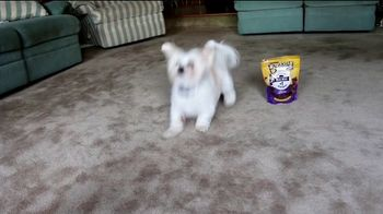 Purina Beggin' TV Spot, 'Bonkers for Beggin: Purple Leash Project' Song by Johnny Wishbone - Thumbnail 3