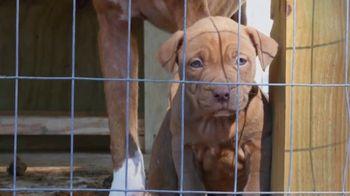 ASPCA TV Spot, 'Rescuer Tim Rickey's Story: Free Membership Kit' - Thumbnail 3