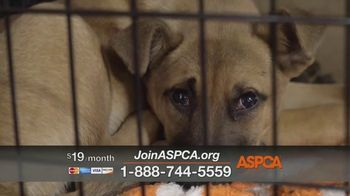 ASPCA TV Spot, 'Rescuer Tim Rickey's Story: Free Membership Kit' - Thumbnail 5