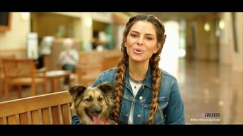 Purina TV Spot, 'Food Donations for Adoptable Dogs From Purina and the BHDS' feat. Maria Menounos - 2 commercial airings