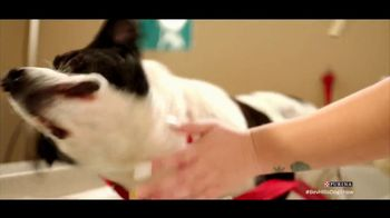 Purina TV Spot, 'Food Donations for Adoptable Dogs From Purina and the BHDS' feat. Maria Menounos - Thumbnail 6