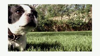 PetSmart TV Spot, 'Curbside Pickup' - Thumbnail 5