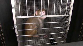 PETA TV Spot, 'Monkey Fright Experiments'