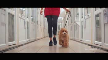 Purina TV Spot, 'Purina Cares: Nutrition and Sustainability' - Thumbnail 8