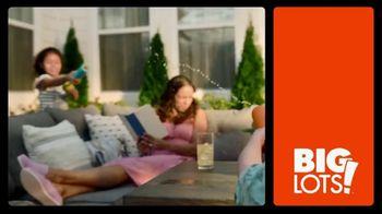 Big Lots TV Spot, 'Live a Little Big This Summer' - Thumbnail 1