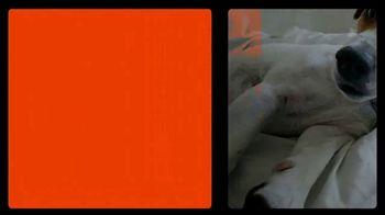 Big Lots TV Spot, 'Sealy Mattress Collection' - Thumbnail 10