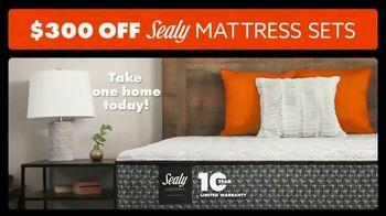 Big Lots TV Spot, 'Sealy Mattress Collection' - Thumbnail 7