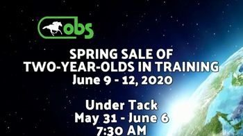 Ocala Breeders' Sales TV Spot, 'Spring Sale Graduates' - Thumbnail 8