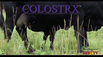 Huvepharma Colostrx TV Spot, 'Start Healthy, Stay Healthy' - Thumbnail 1