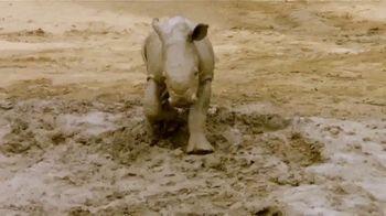 San Diego Zoo TV Spot, 'Edward the Southern White Rhino'