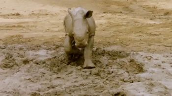 San Diego Zoo TV Spot, 'Edward the Southern White Rhino'
