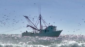 Harris Teeter TV Spot, 'Seafood: Shrimp' - Thumbnail 5