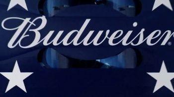 Budweiser Summer Patriotic Cans TV Spot, 'Memorial Day: Taste of Freedom' - Thumbnail 8