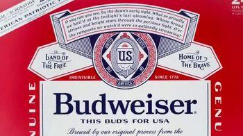 Budweiser Summer Patriotic Cans TV Spot, 'Memorial Day: Taste of Freedom' - Thumbnail 9